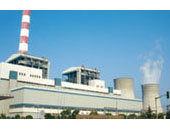 Shanghai Wujing Second Power Co., Ltd.